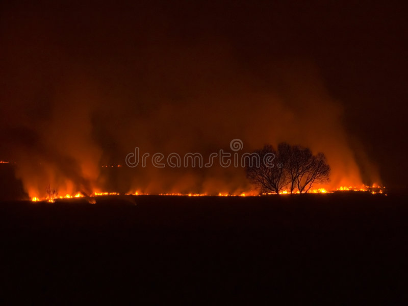 ноча пожара стоковые фото