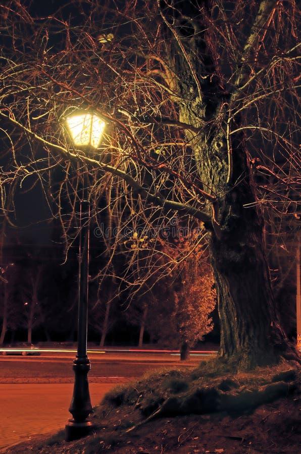 Download ноча светильника стоковое изображение. изображение насчитывающей automobiled - 6858379