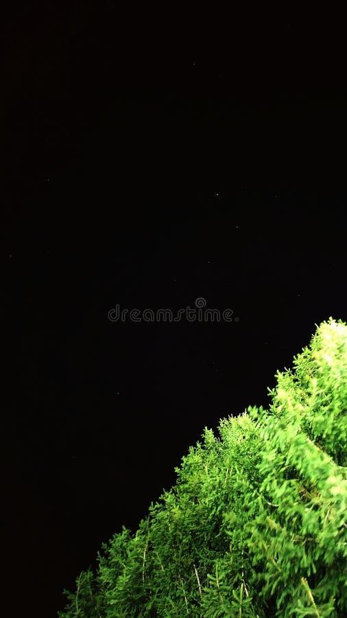 ноча стоковое фото