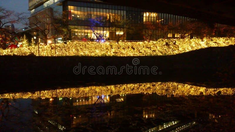 Ноча Akasaka стоковые изображения rf