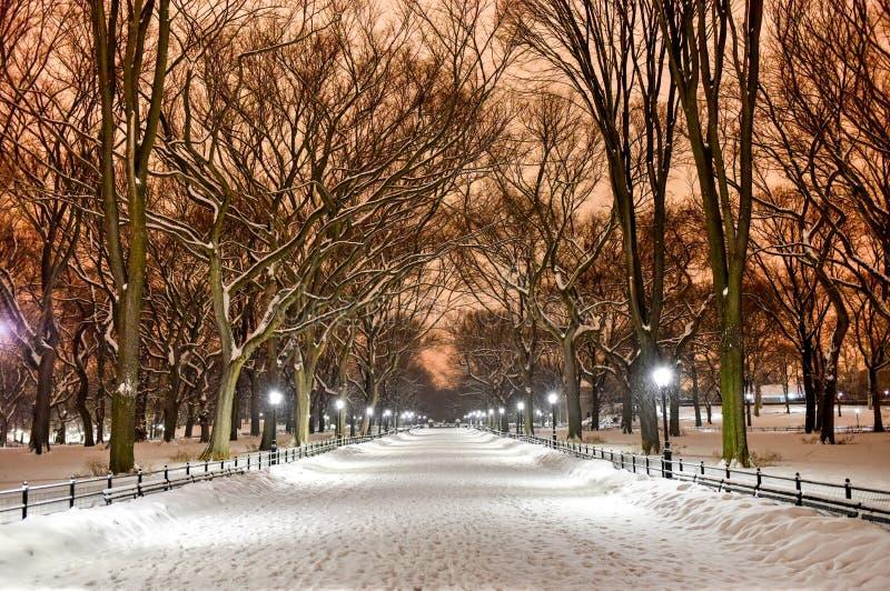 Ноча Central Park, Нью-Йорк стоковые фото