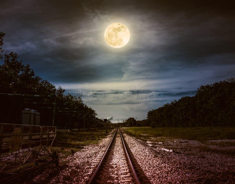 Ночное небо и полнолуние над силуэтами деревьев и железной дороги стоковая фотография rf