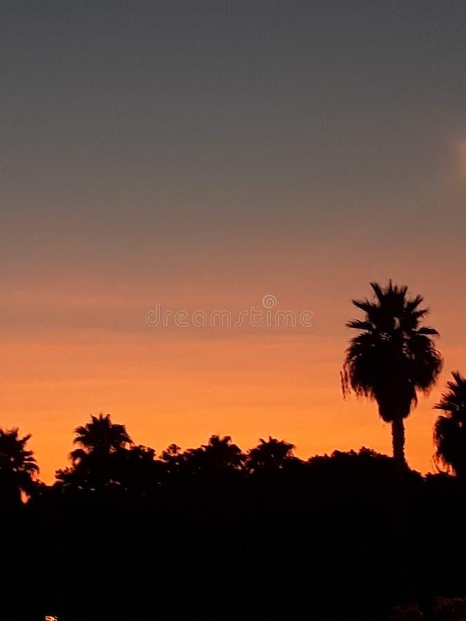 Ночь на Аликанте стоковая фотография rf