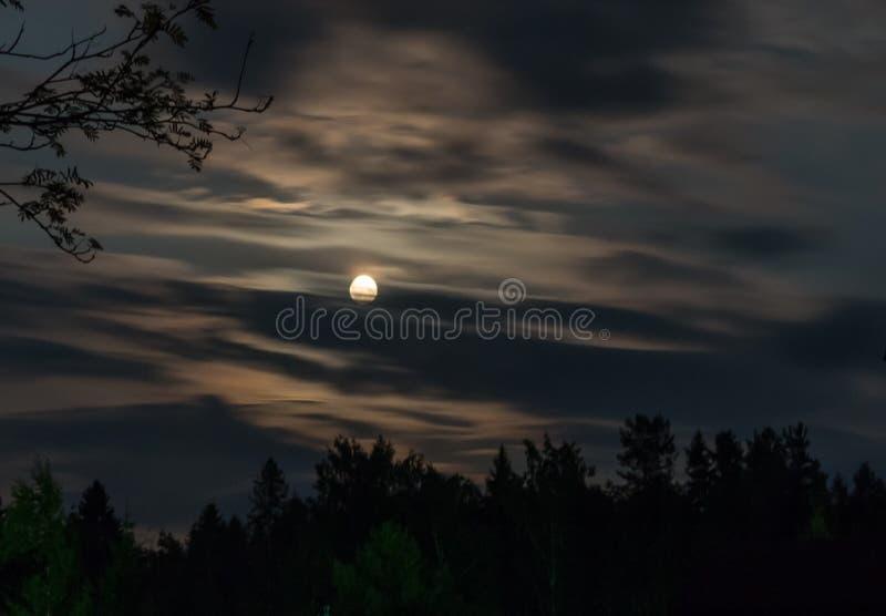 Ночь снятая луны в облаках стоковая фотография