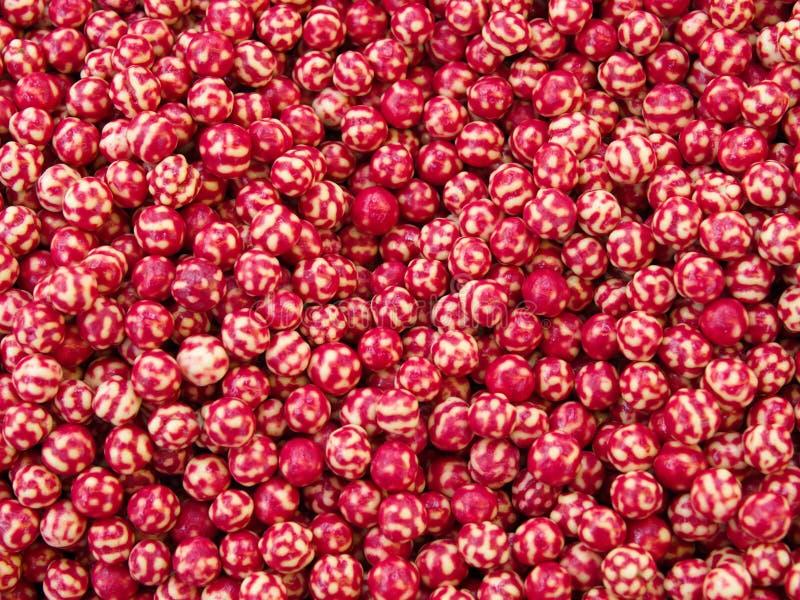 нут вишни зажаренный в духовке соусом стоковые изображения