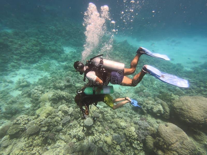 Ныряя люди ныряют в море с кораллами и рыбами вокруг, курс beginner открытых вод водолаза акваланга с профессиональным инструктор стоковые изображения rf