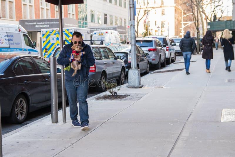 Нью-Йорк, США - 3-ье января 2019 Человек идя с собакой на улице NYC lifestyle стоковые фото