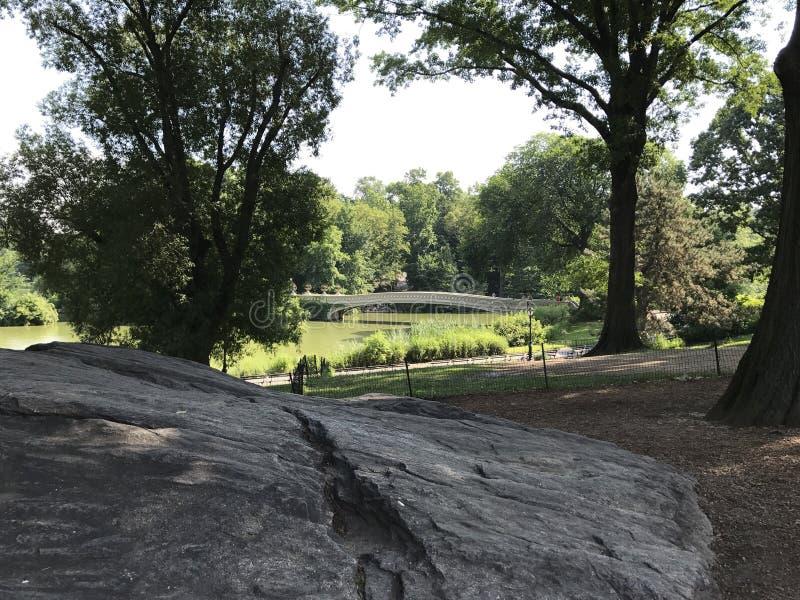 Нью-Йорк, Central Park, мост стоковое фото