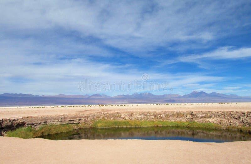 Оазис в Ла луне Valle de, долине луны в пустыне San Pedro de Atacama стоковые фотографии rf