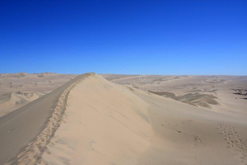 Оазис Huacachina в пустыне Atacama, Перу стоковые фотографии rf