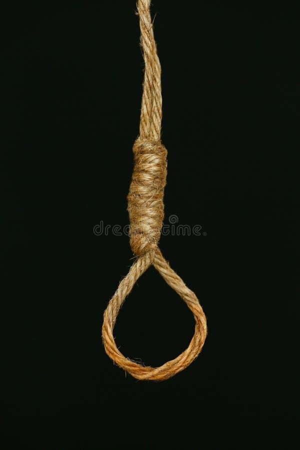 Обанкротившийся концепция, петля веревочки с hangman& x27; смертная казнь через повешение узла s в фронте, предпосылке хеллоуина стоковое фото