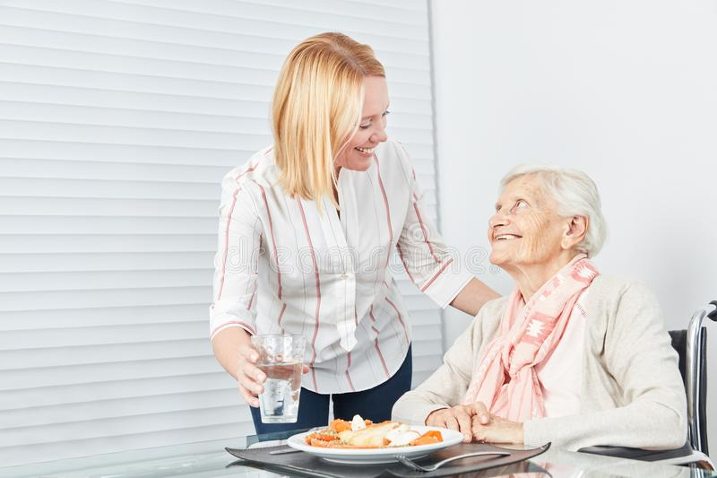 Обед сервировки молодой женщины к пожилому гражданину стоковая фотография rf