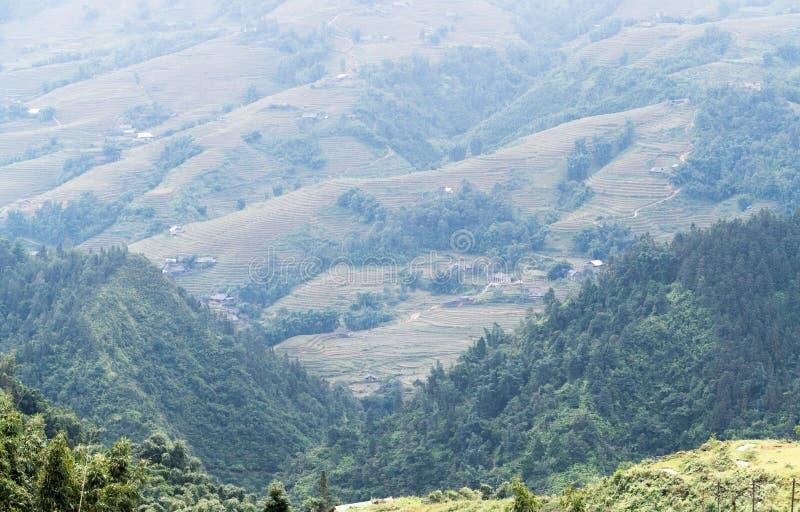 Обезлесение на горе с рисом террасы стоковые изображения rf