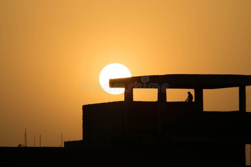 Обезьяна сидя на крыше a под зданием конструкции на заходе солнца стоковые фотографии rf
