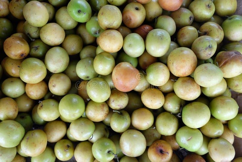 Обезьяна Яблоко стоковые изображения