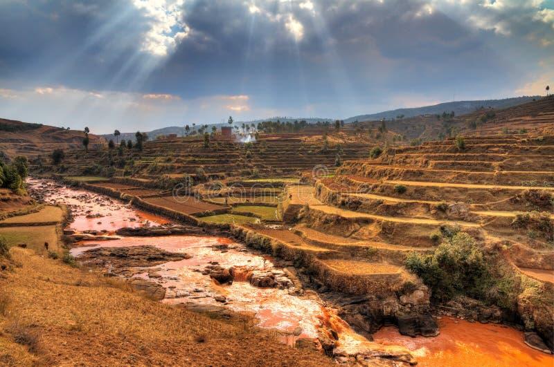 Обезлесение Мадагаскар стоковая фотография rf