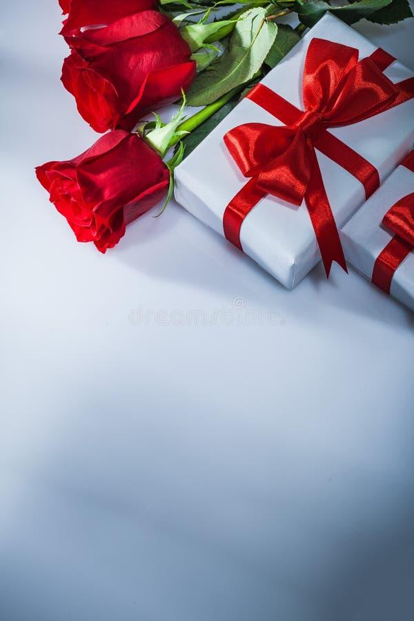 Обернутые розы подарочных коробок естественные на белой предпосылке стоковые фотографии rf