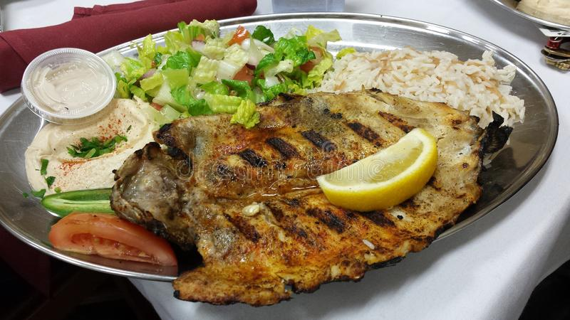 Обедающий рыб стоковое фото rf