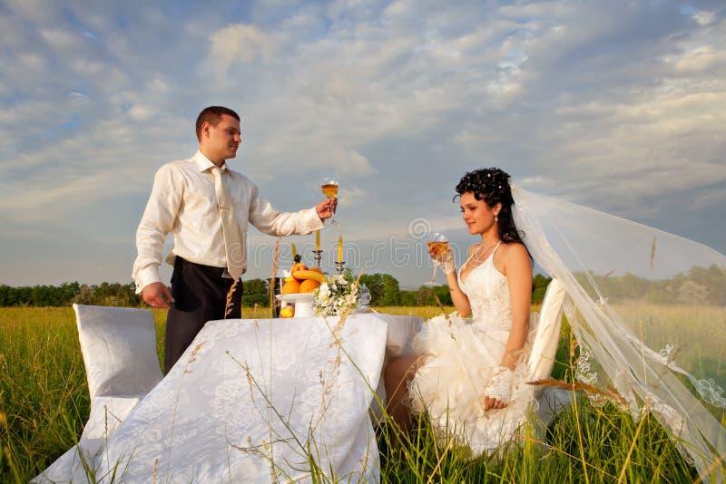 Обедающий свадьбы на поле стоковые изображения rf