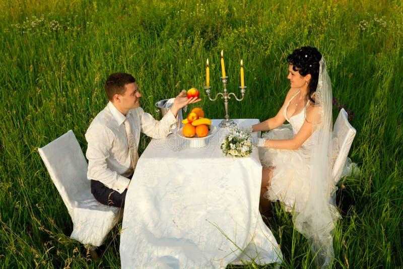 Обедающий свадьбы на поле стоковая фотография rf