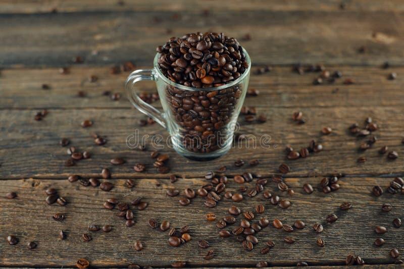 Обжаренные кофейные бобы в стекле стоковые фото