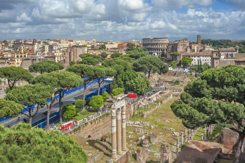 Обзор от высокой точки, над частью старого Рима, соснами в расстоянии Colosseum и родственными зданиями стоковая фотография