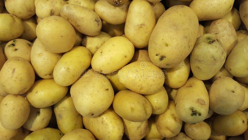 Обилие клети желтых картошек стоковые изображения rf
