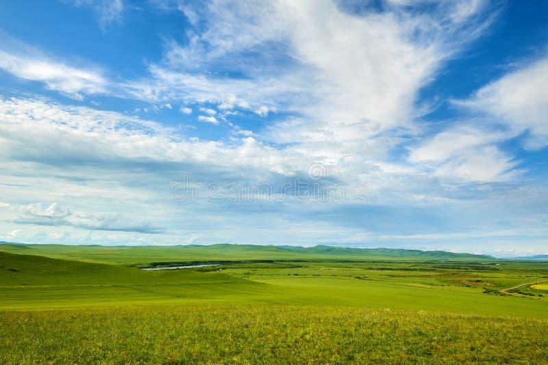 Облака в небе и злаковике лета стоковое изображение