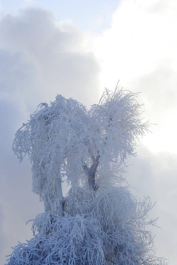 Download облака идут снег к валу стоковое фото. изображение насчитывающей зима - 483560
