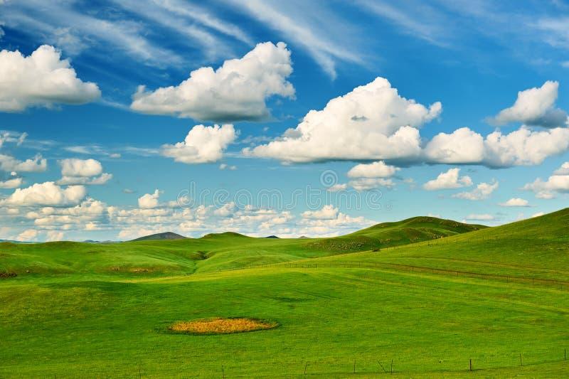 Облака и холмы на злаковике лета стоковые изображения rf