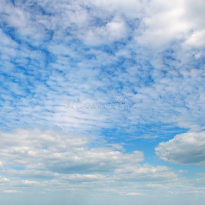 Облака кумулюса в голубом небе стоковое изображение rf