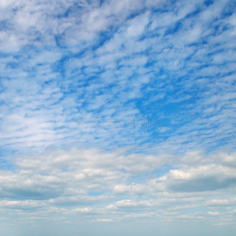 Облака кумулюса в голубом небе стоковые фото