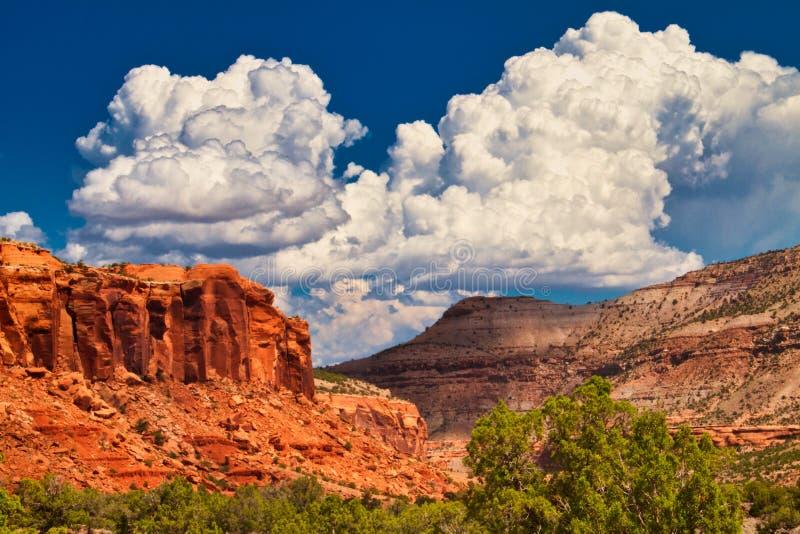 Облака кумулюса над каньоном Escalante стоковые фотографии rf