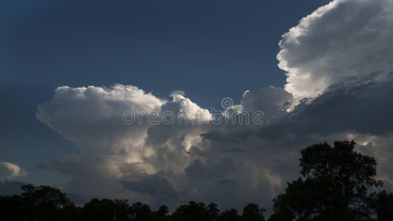Облака кумулюса причаливая с деревьями стоковое фото