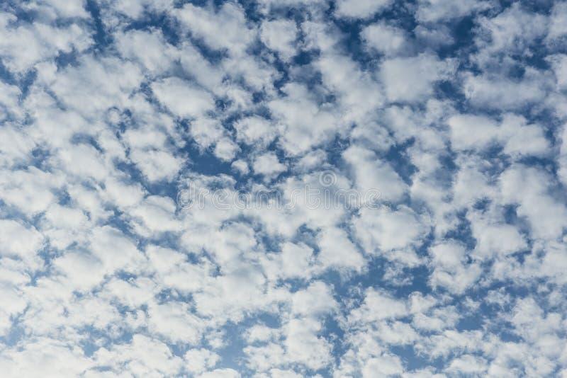 Облака Altocumulus наслоенные заплатой пушистые стоковые фото