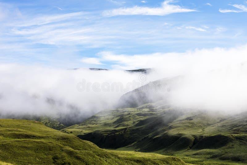 Облако нижнего яруса покрывают гору стоковые изображения rf