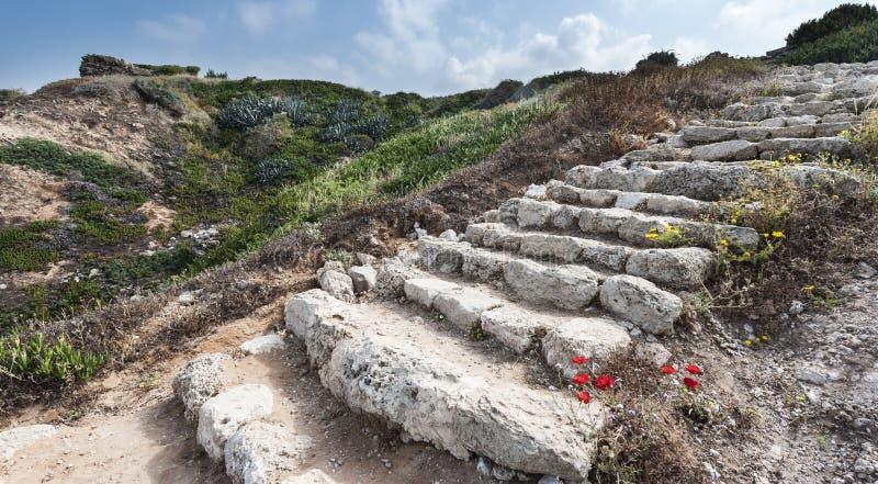 Обмылки лестниц стоковые фото