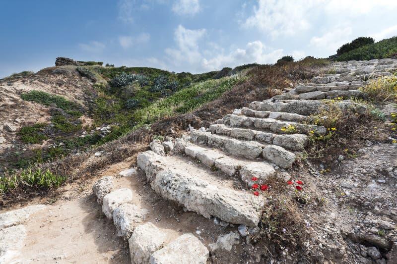 Обмылки лестниц стоковое изображение rf