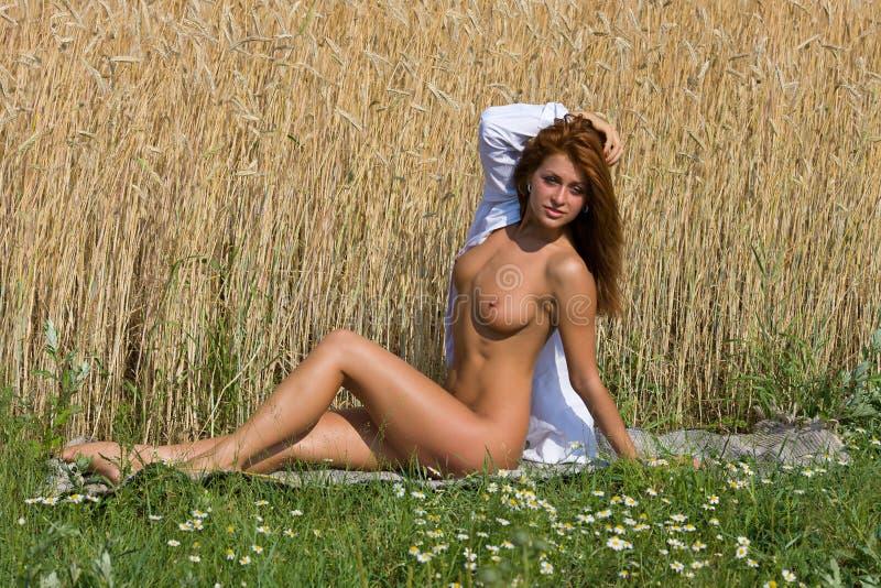 Download Обнажённая девушка в поле. стоковое фото. изображение насчитывающей привлекательностей - 37928584