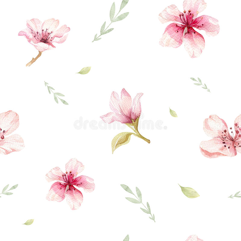 Обои акварели безшовные с вишней цветения цветут, branc иллюстрация вектора