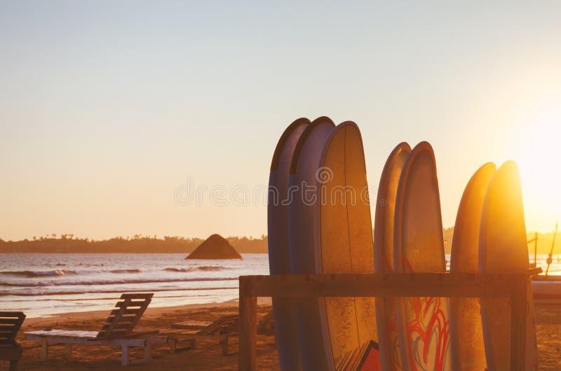 Обои предпосылки праздников каникул - строка surfboards, 2 кресел для отдыха на пляже стоковое фото rf