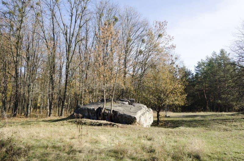 Оборотень руин Тариф Адольфа Гитлера в Украине стоковое изображение