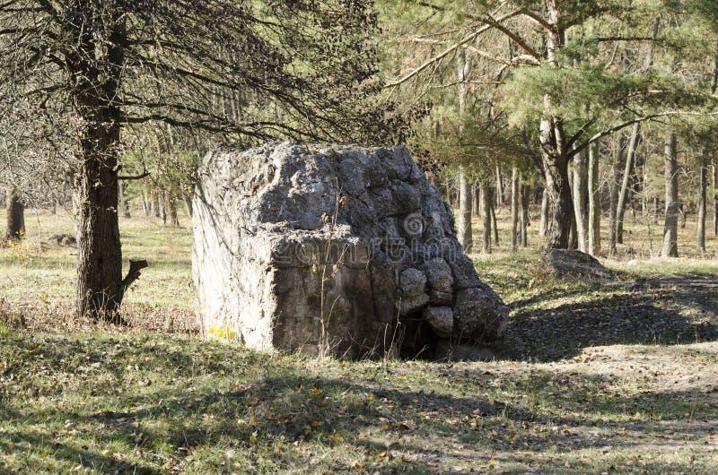 Оборотень руин Тариф Адольфа Гитлера в Украине стоковые фотографии rf