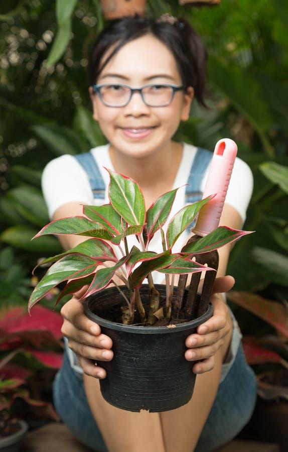 Оборудование женщины садовничая стоковое изображение