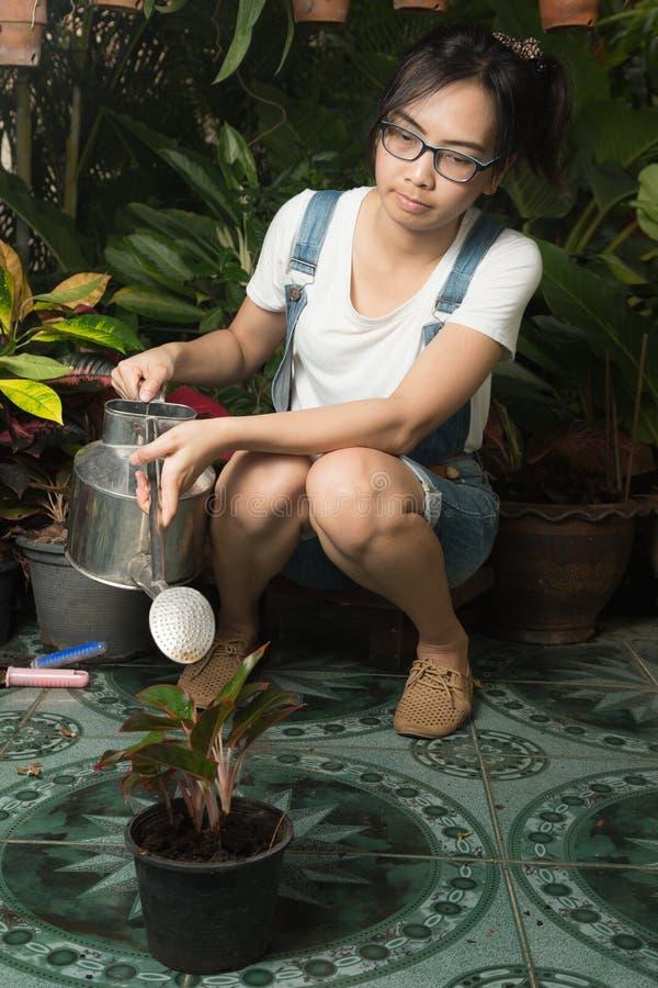 Оборудование женщины садовничая стоковые изображения