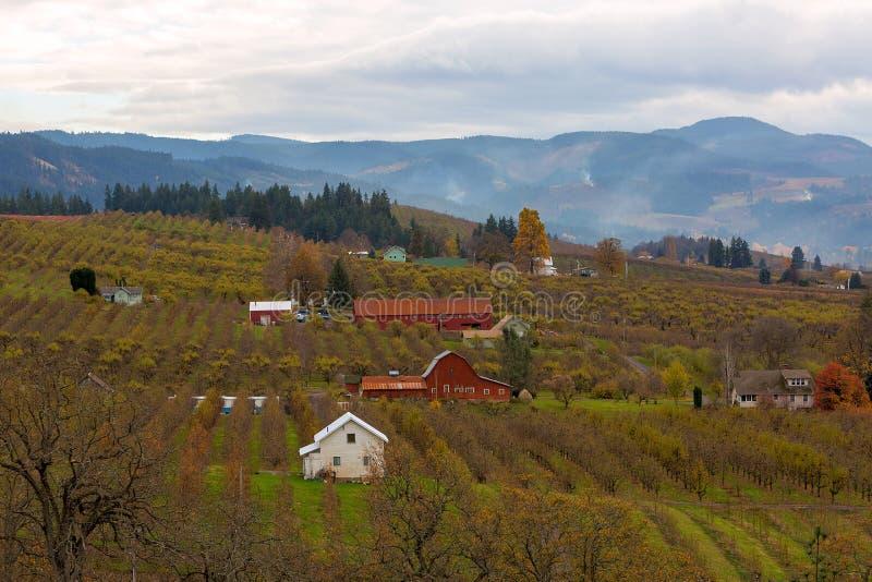 Обрабатываемая земля сада плодоовощ в сезоне Рекы Hood ИЛИ осени США стоковое изображение