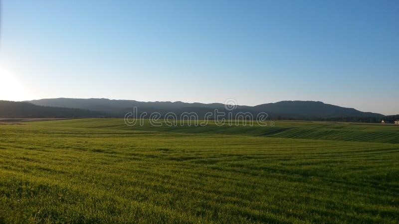Обрабатываемая земля и горы стоковое изображение
