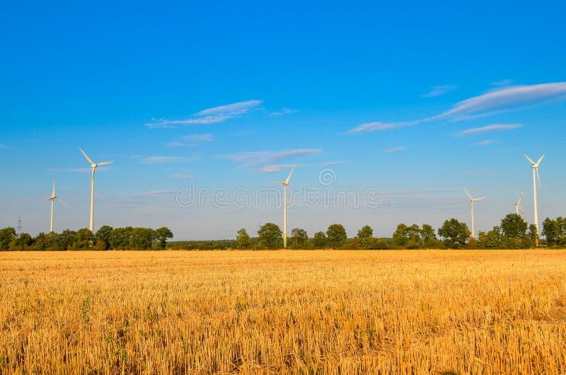 Download Обрабатываемая земля пшеничного поля Стоковое Фото - изображение насчитывающей небо, ландшафт: 33728668