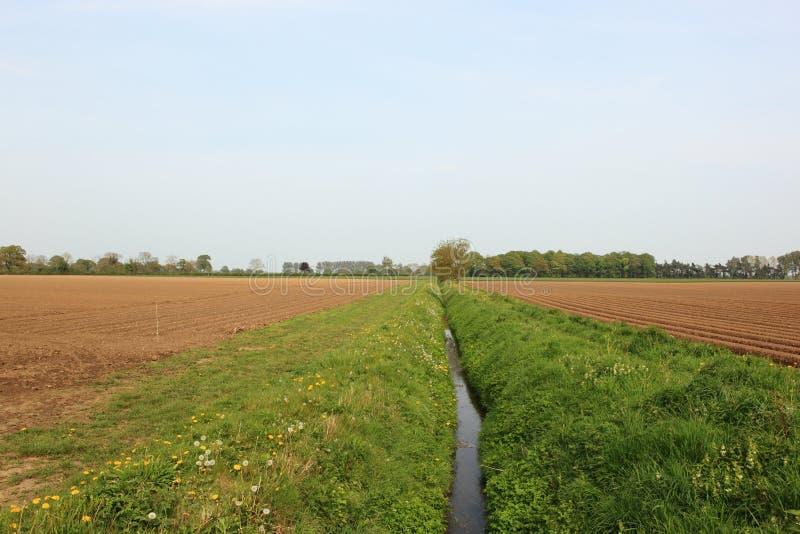 Обрабатывать землю ландшафт в весеннем времени с полями дренажной траншеи и картошки стоковое фото rf