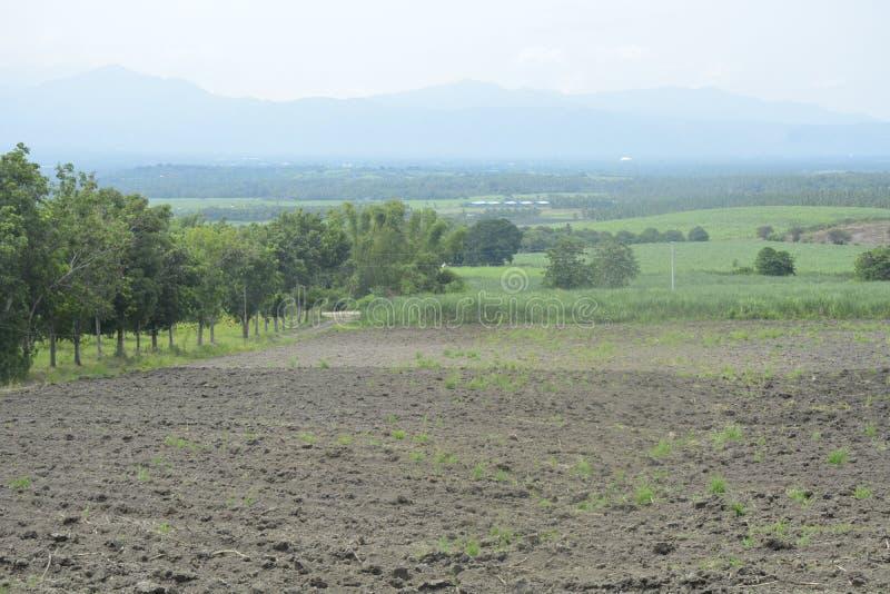 Обрабатывающ землю в Mahayahay, Hagonoy, Davao del Sur, Филиппины стоковая фотография rf